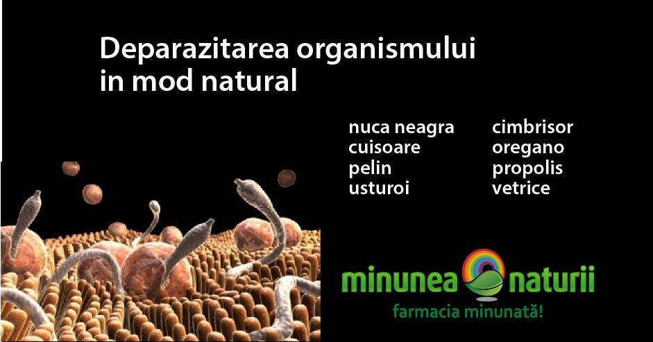 schema tratament paraziti intestinali paraziti intestinali copii tratament