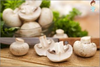 ciuperci in sarcina