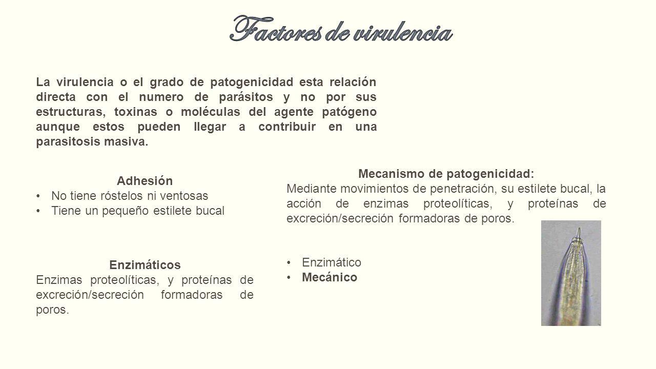 FIȘA DISCIPLINEI. Tipul de evaluare - PDF Free Download