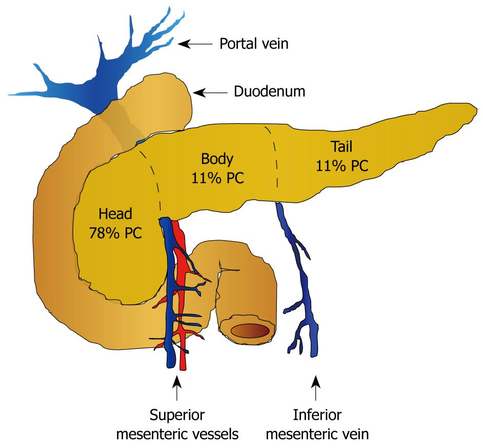 helminth therapy sibo