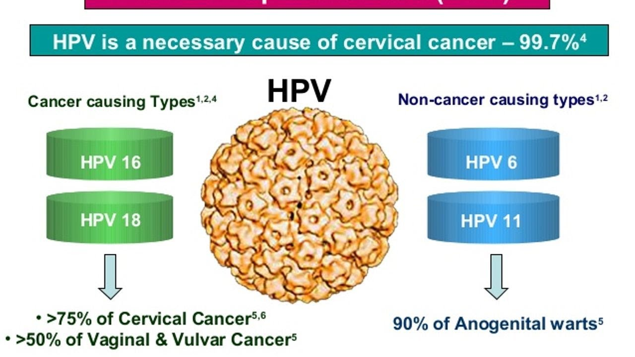 cervical cancer cause by hpv hpv research boston