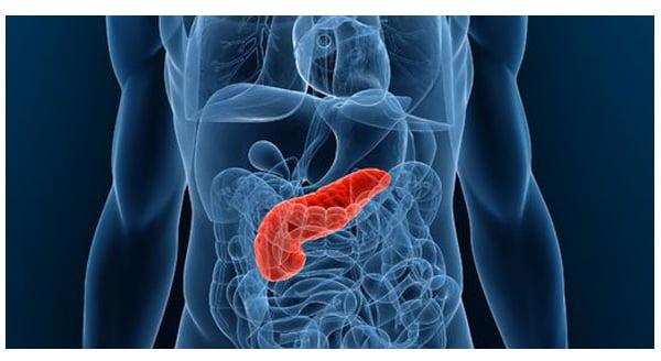 hpv positif et biopsie endometrial cancer symptoms patient stories