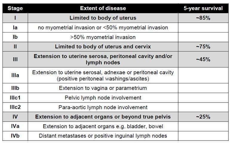 endometrial cancer prognosis by stage metastatic cancer bowel