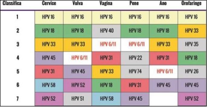 vaccino hpv si puo fare con il ciclo