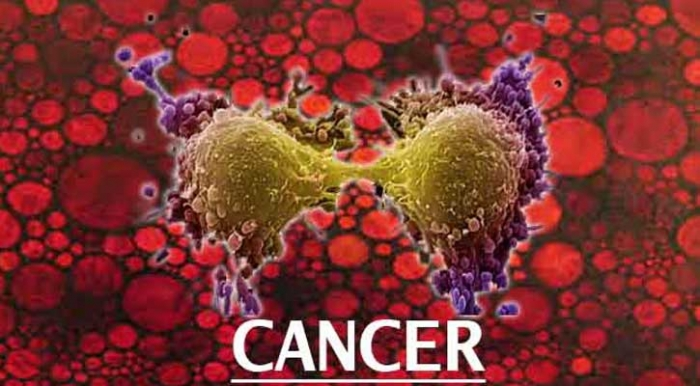 cancerul si vitamina c papilloma virus hpv sintomi