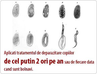 tipuri de paraziti intestinali