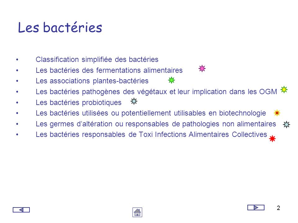 bacterie 2+