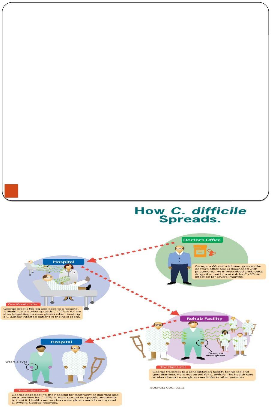 hpv versus genital warts
