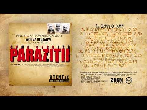 Parazitii feat Dan Lazar Toate-s la fel (cenzurat) | Music videos, Logos, Movie posters