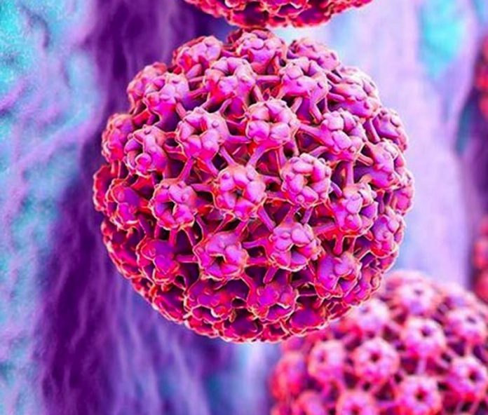 virus hpv causa cancer