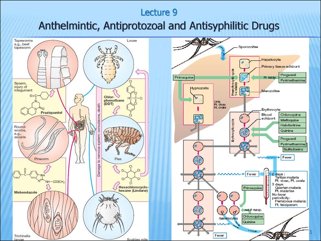 anthelmintic action renal cancer epidemiology