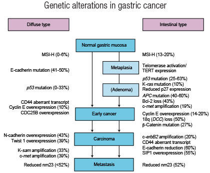 gastric cancer alcohol