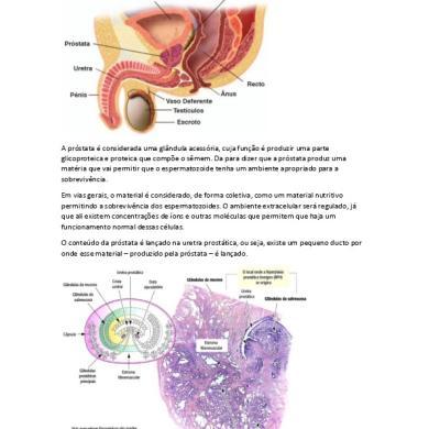 cancer de prostata faza incipienta