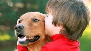 10 boli pe care le-ai putea lua de la animalul tau de companie