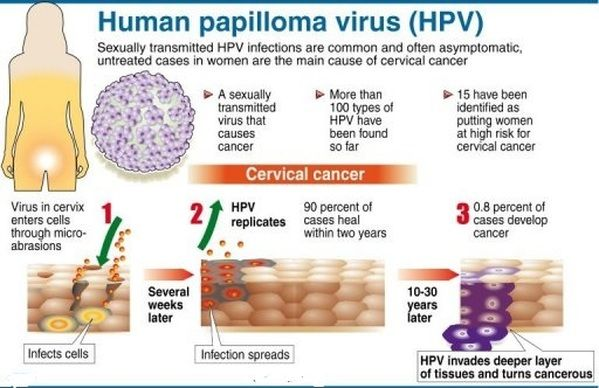 papilloma virus how is it transmitted)