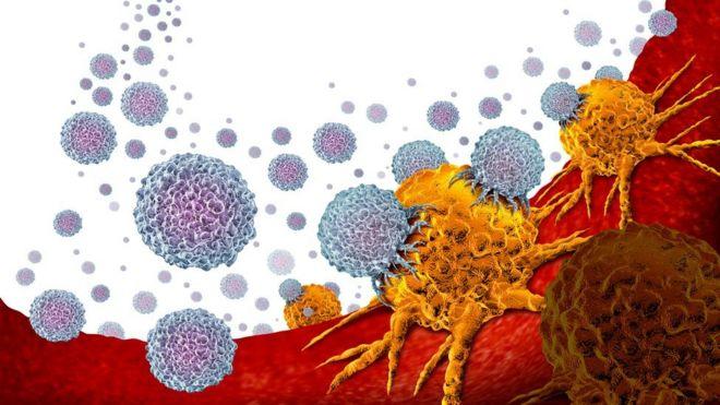 bacterii lactozo pozitive
