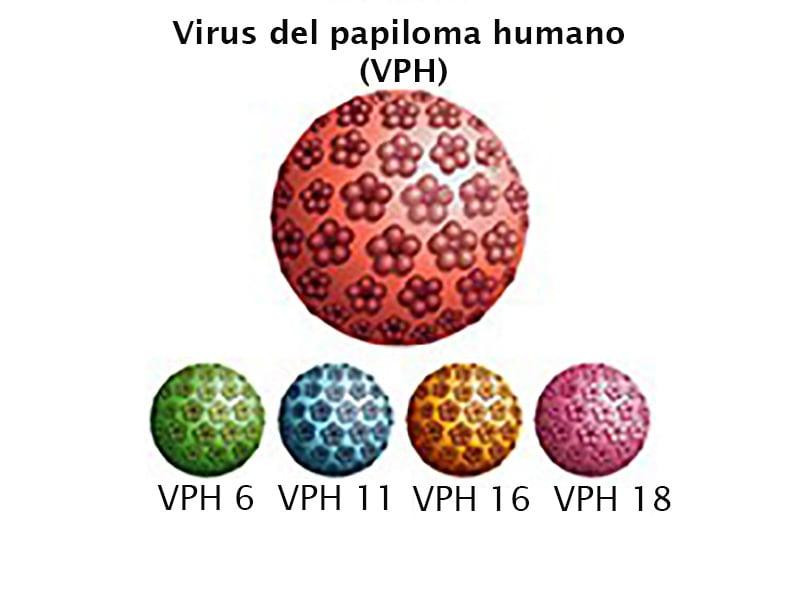 hpv wart cream cvs se poate opera cancerul la ficat