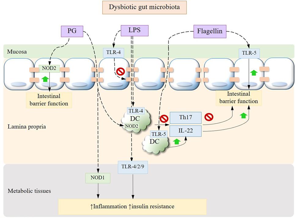 parazitozele frecvente la copii papillary thyroid cancer nhs