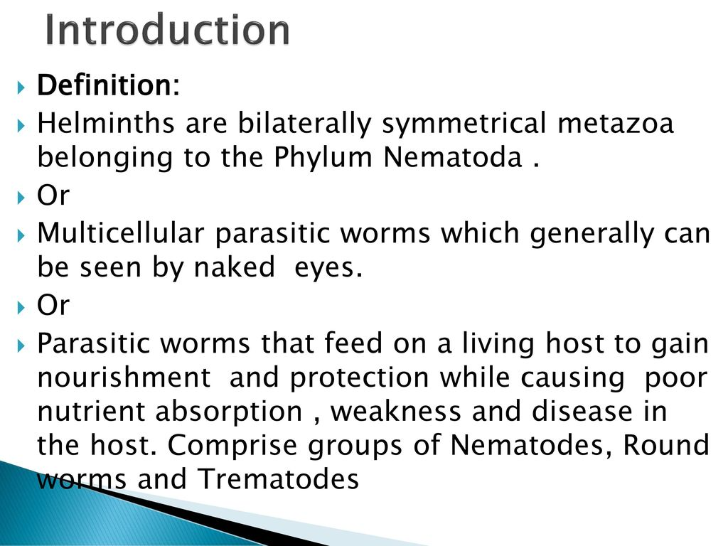 helminth group definition