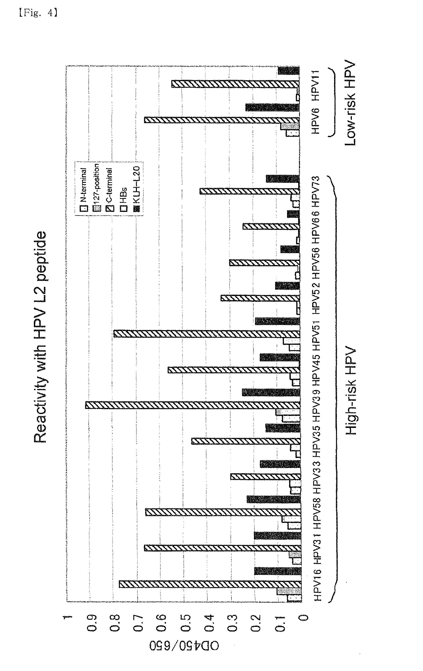 anti papilloma 4v verrugas hpv caracteristicas
