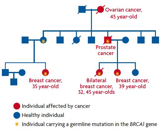 gastric cancer kras hpv warts liquid nitrogen