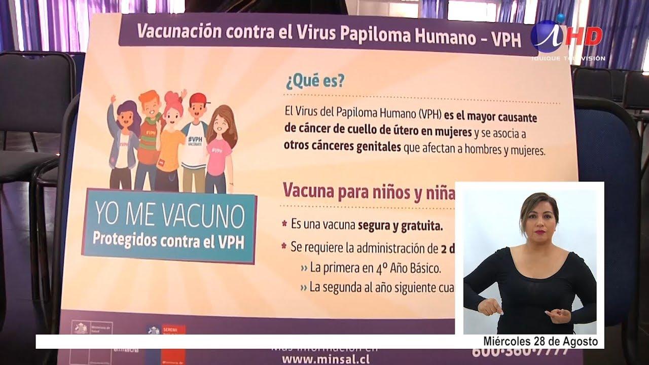 virus papiloma ninos