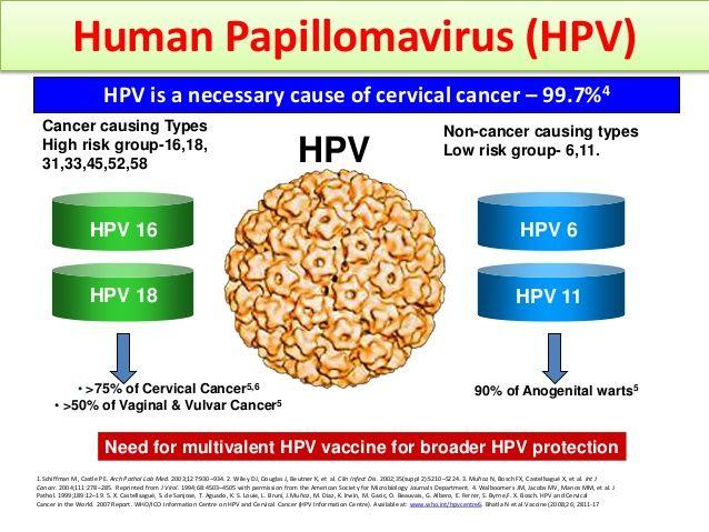 el virus de papiloma humano que es