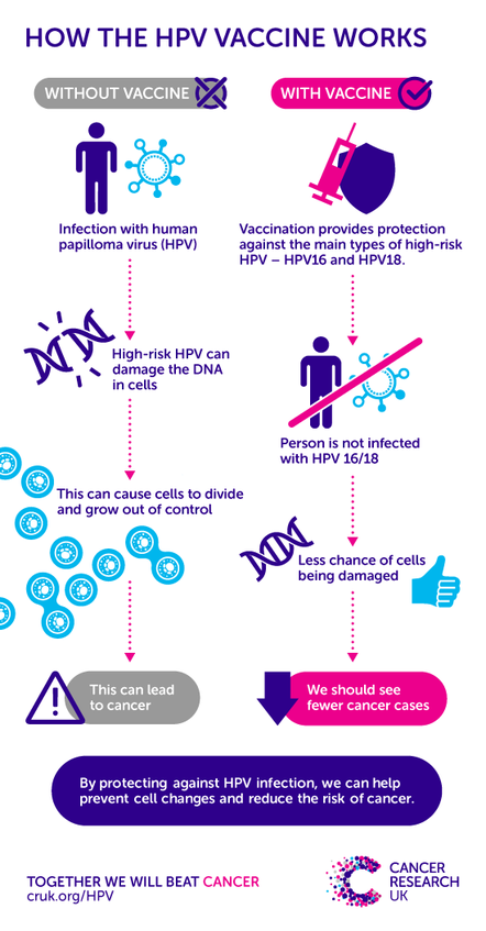 hpv high risk go away