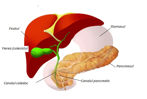 cancer cap de pancreas simptome