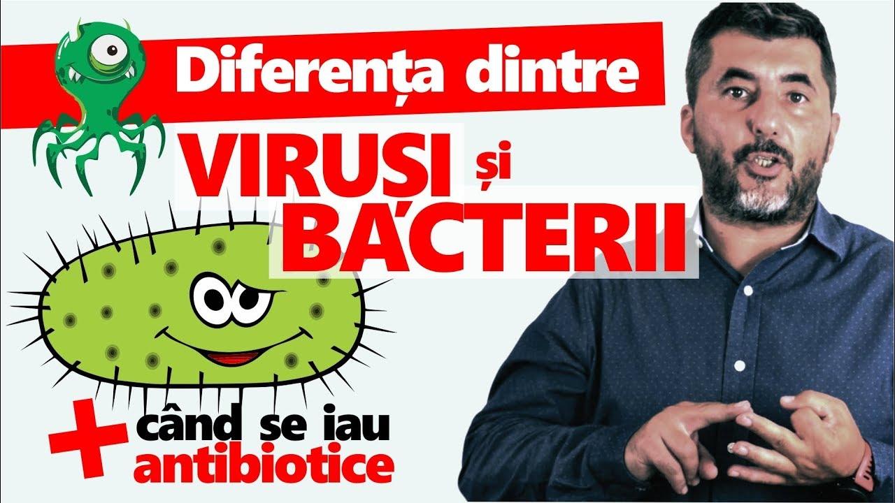 paraziti v krvi papillomavirus et hpv
