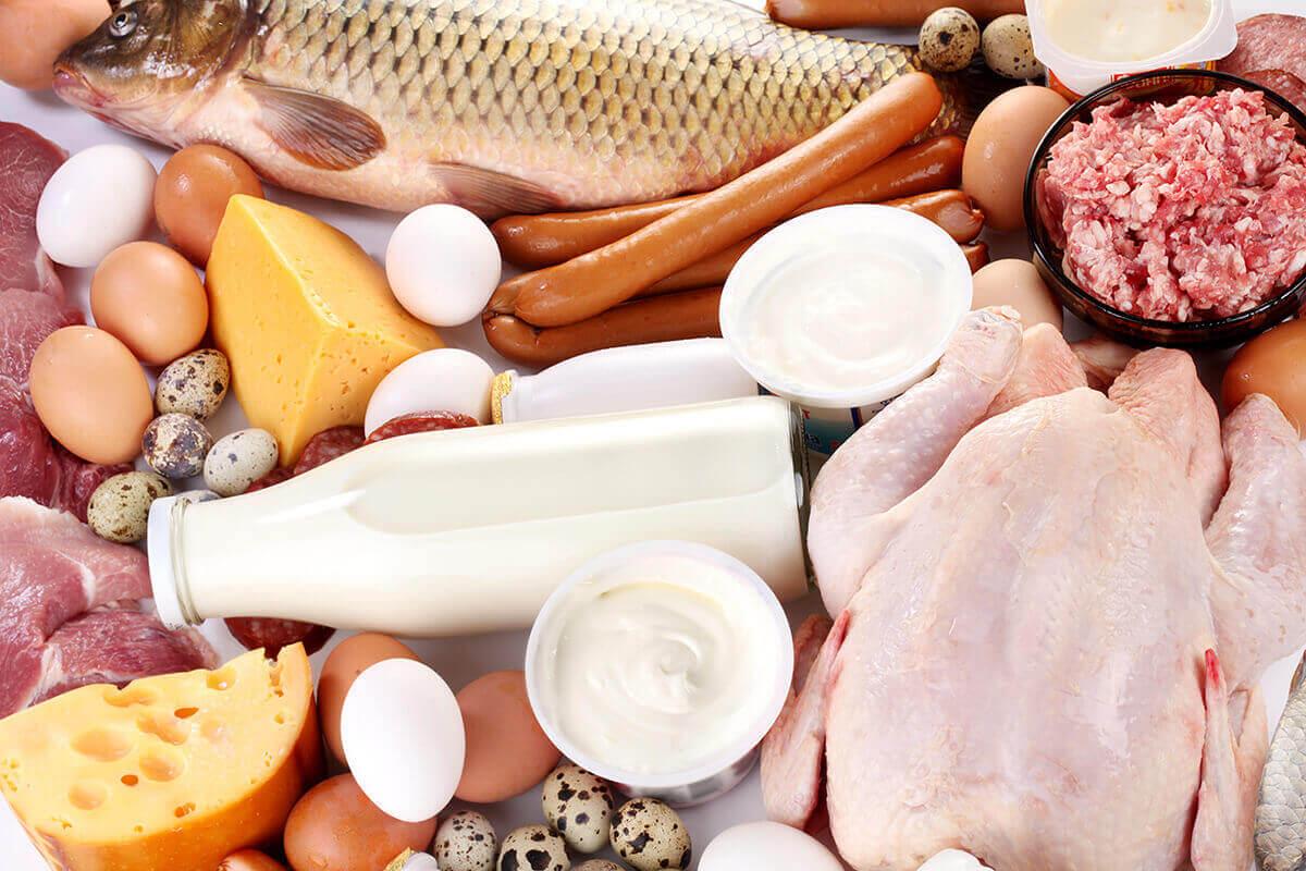 bacterii utile in alimentatie