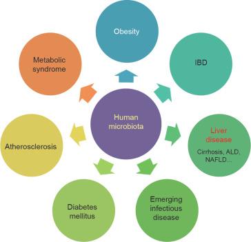 dysbiosis disease