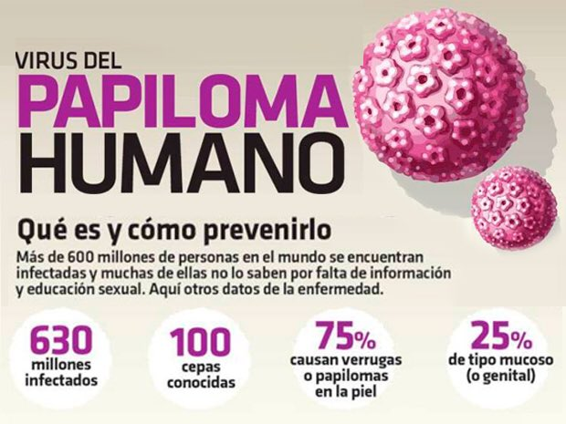 todo acerca del virus papiloma humano