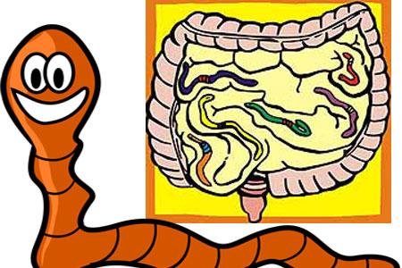 paraziti cilveka organisma simptomi cancerul de piele definitie