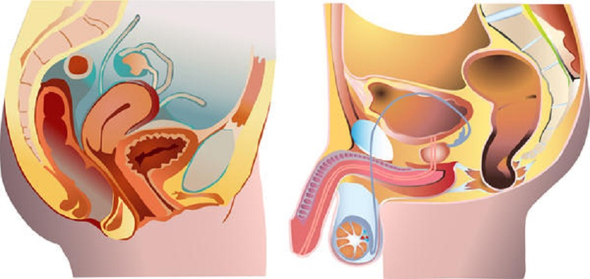 cancer de uretra sintomas dezintoxicare cocaina