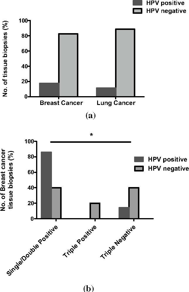 hpv 16 lung cancer papilloma genitale
