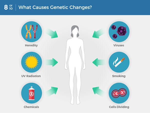 cancer cells genetic changes schistosomiasis map 2019