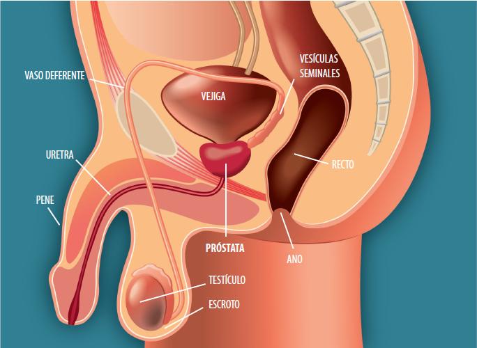 cancer de uretra tratamiento