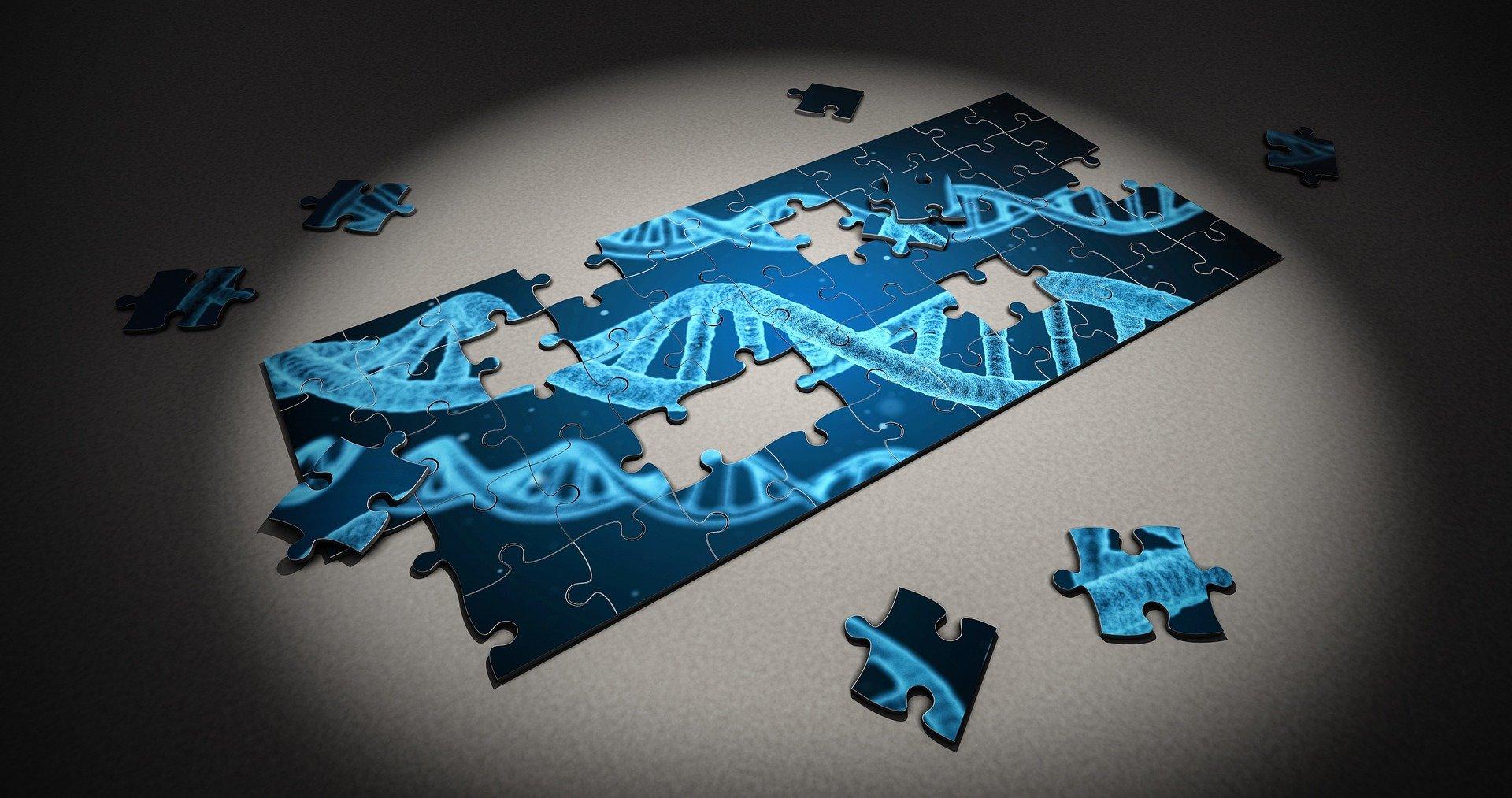 cancer genetic marker virus del papiloma humano en la mujer sintomas