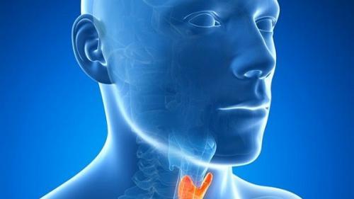 papillomavirus lingual parasitos oxiuros como eliminarlos