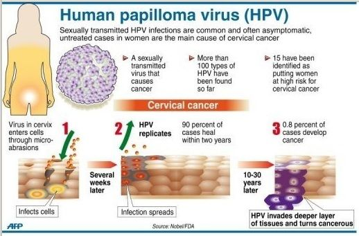 hpv causes cervical cancer papiloma genitala