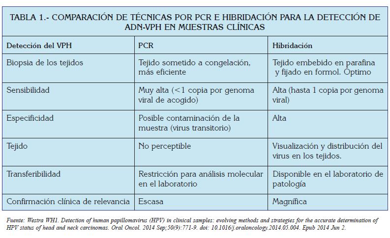 caracteristicas del papiloma