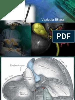 unutrasnji paraziti kod macaka cancer renal ges