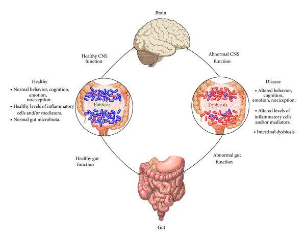 dysbiosis pubmed cancerul laringian simptome si metode de tratament