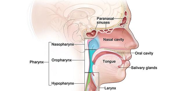 sucuri detoxifiere copii vestibular papillomatosis is normal