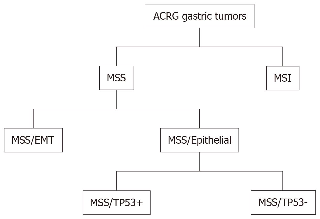 colorectal cancer in 2019 cancer la san faza 2