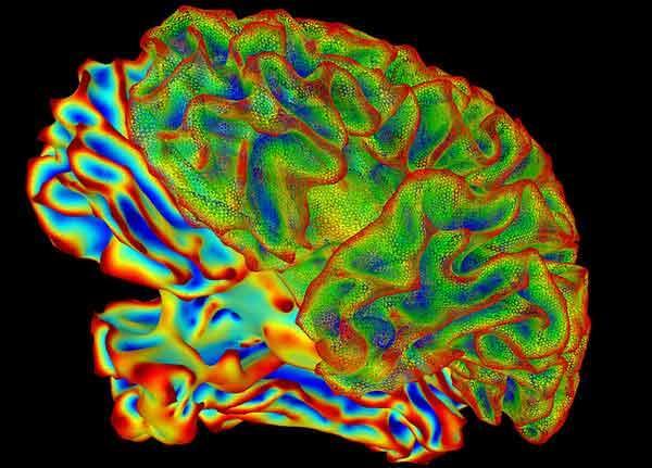 hpv brain cancer papiloma laringeo causas