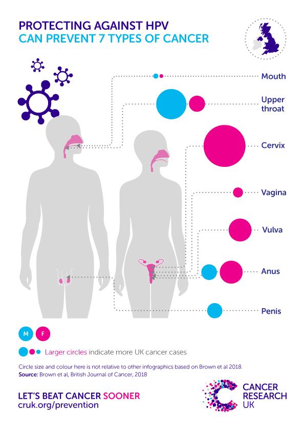 papillomavirus n 16 hpv and cancer statistics
