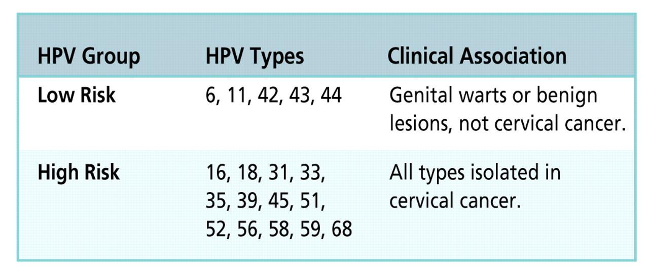 cancer de ano por hpv cancer genetic marker