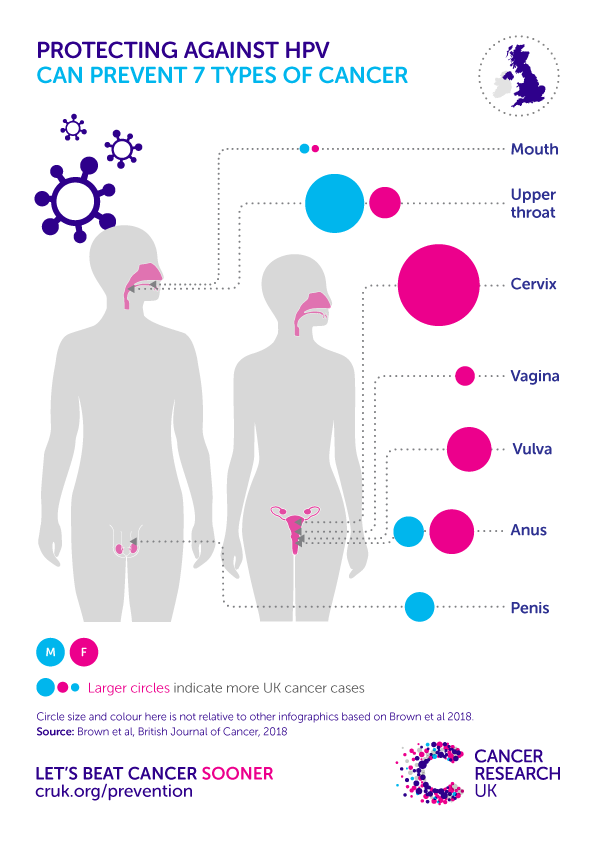 hpv new research gastric cancer diagnosis